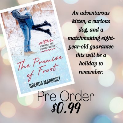 Pre-order The Promise of Frost by Brenda Margriet